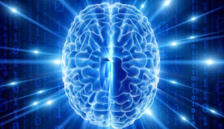 http://neuronet.utk.edu/images/slideshow/main3.jpg